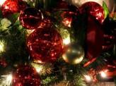 [知夏七未]「メリークリスマス!」は当たり前ではない?!クリスマスシーズンでも文化が違えば全く違う?!〜ユダヤの『ハヌカ祭』をご存知ですか?