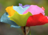 [大原ケイ]【「美しい」同性婚合憲命令文は「正しい」のか?】~結婚を神聖化しすぎの声も~