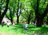 保育現場の声を聞こう(上) 日本の待機児童問題その3