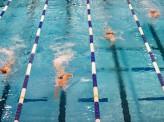 水泳界、発信力の秘密 北島選手引退